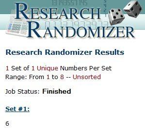 Randomizer_Jonathan_Lambert.JPG